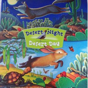 Desert Day Desert Night